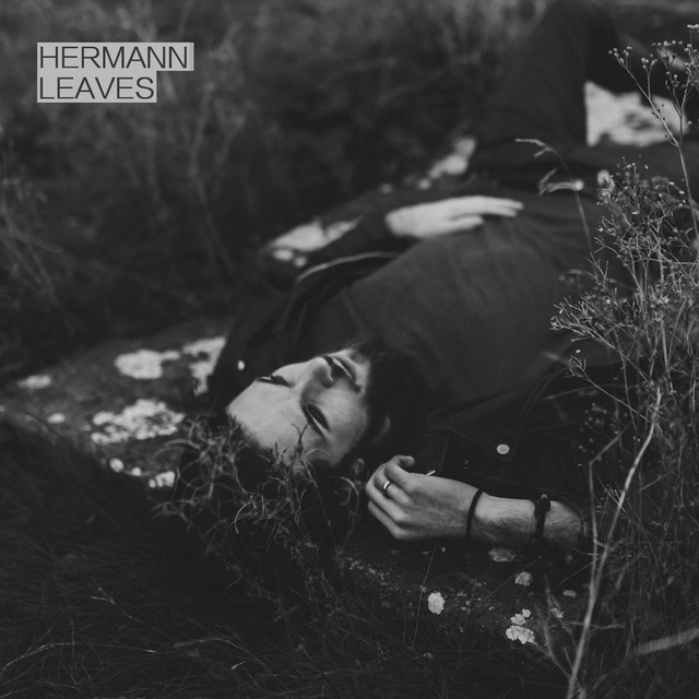 Cover image for a release from Hermann